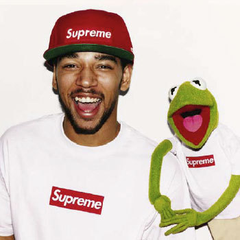 kermit-supreme-terry-richardson-3